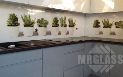 Szkło laminowane – rośliny w doniczkach